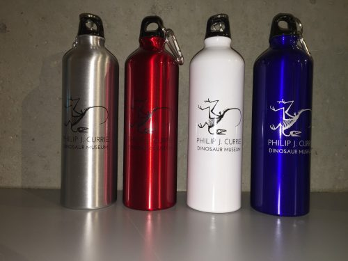 Water Bottle with Carabineer