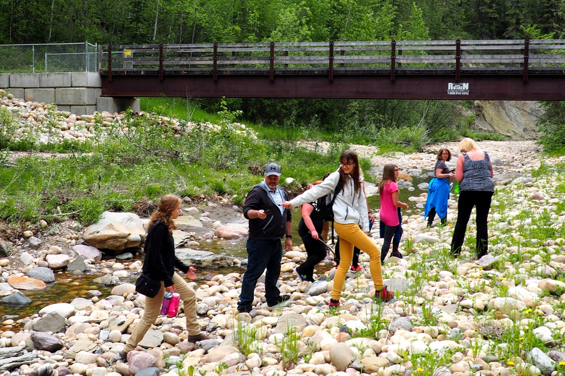 Pipestone Creek Bonebed Tours